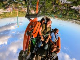 Katapult-Achterbahn Tigris in Busch Gardens Tampa Bay